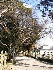 なばり四季のブログ-2012.2.16