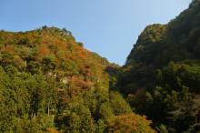 なばり四季のブログ-kimeniwa