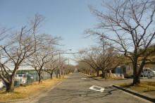 なばり四季のブログ-20130316(2)