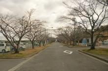 なばり四季のブログ-2013032102