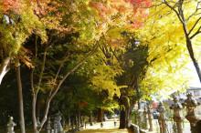 なばり四季のブログ-2012.11.21積田神社