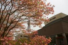 なばり四季のブログ-20130418