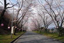 なばり四季のブログ-0412