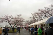 なばり四季のブログ-0414