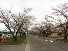 なばり四季のブログ-0416