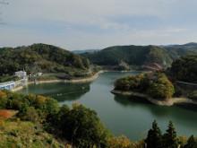 なばり四季のブログ-2011.11.23