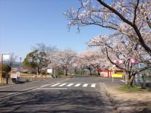 なばり四季のブログ-040503