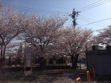 なばり四季のブログ-0400505