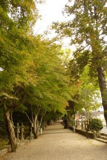 なばり四季のブログ-20121103 積田神社