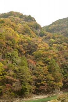 なばり四季のブログ-20121103 紅葉渓
