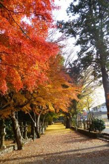 なばり四季のブログ-2012.11.29積田神社
