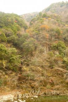 なばり四季のブログ-2012.11.29香落谷