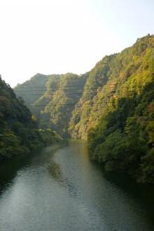 なばり四季のブログ-syourenji