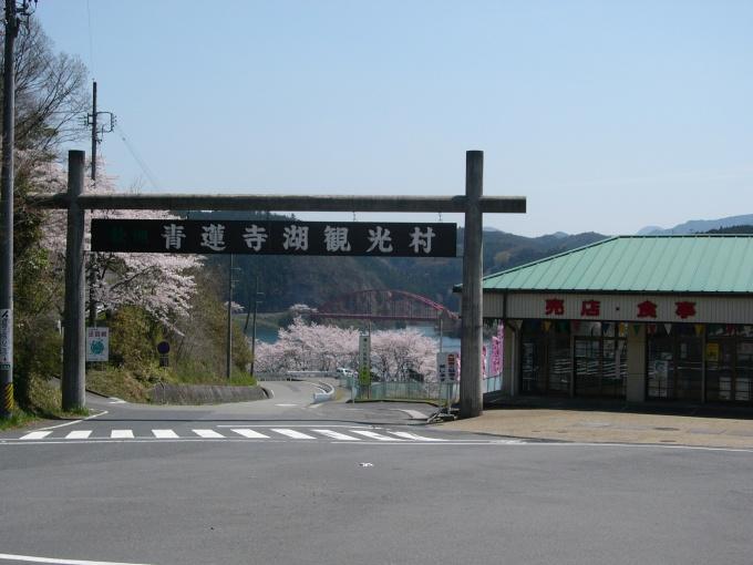 青蓮寺湖ぶどう組合