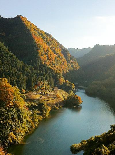 森のレストランアーチ手前の峠より遠く香落橋を望む